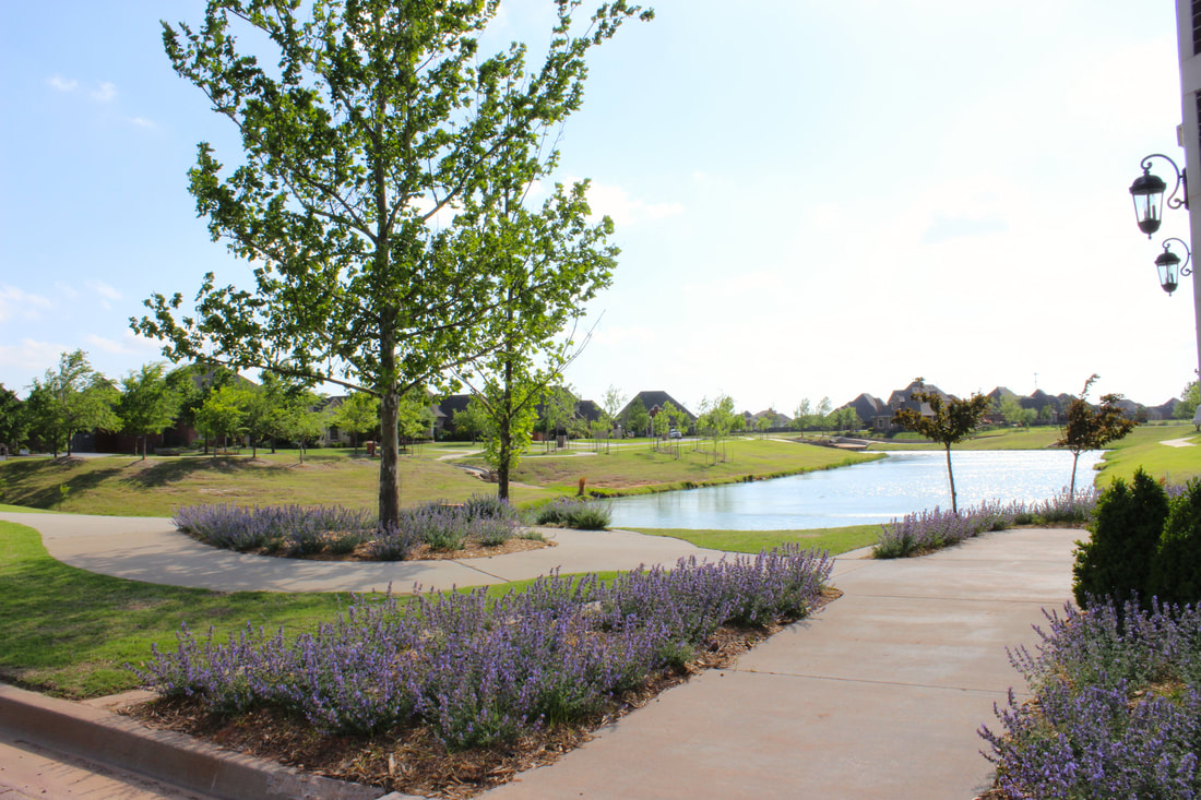 rain gardens | carrington communities